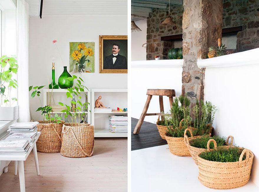 cestos de fibras vegetales