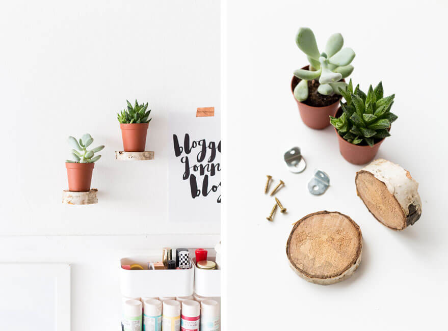 decorar la pared con plantas