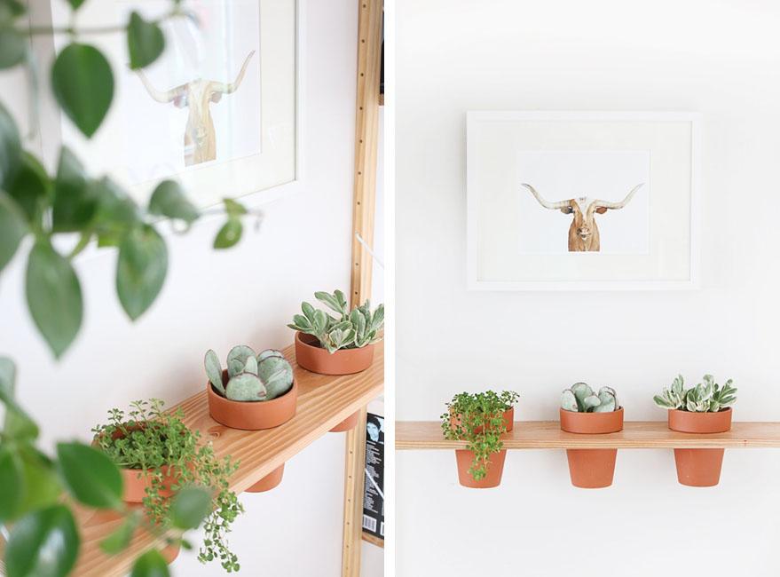 decorar la pared con plantas