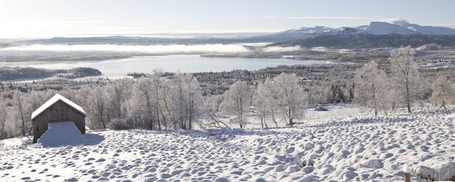 refugio invernal