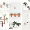 5 DIY muy originales para decorar la pared con plantas